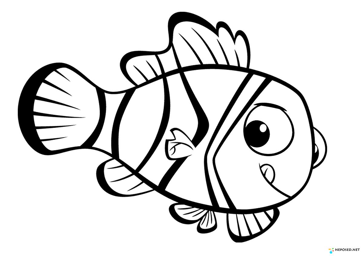 аксессуарах картинки мультяшных рыбок распечатать вариант разобрать вашу