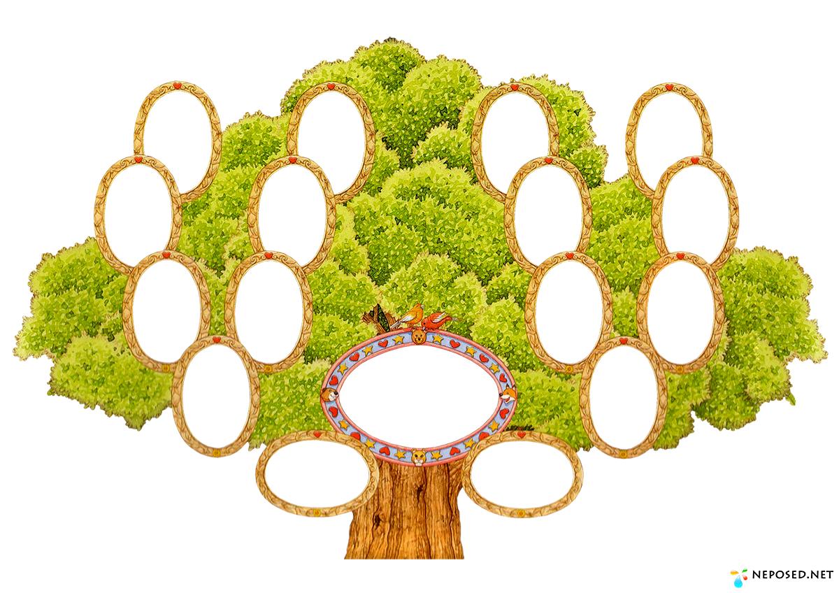 александра картинки к семейному дереву много лет изучал